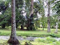 Limbe Botanic Garden  © Limbe Botanic Garden