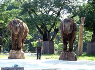 Zoo Negara © Haiqal08