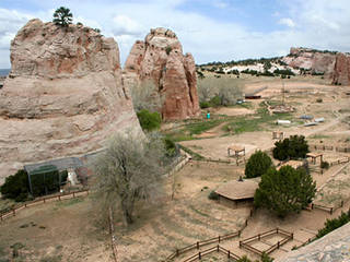 Der Navajo Nation Zoo in Arkansas, USA © Navajo Nation Zoo